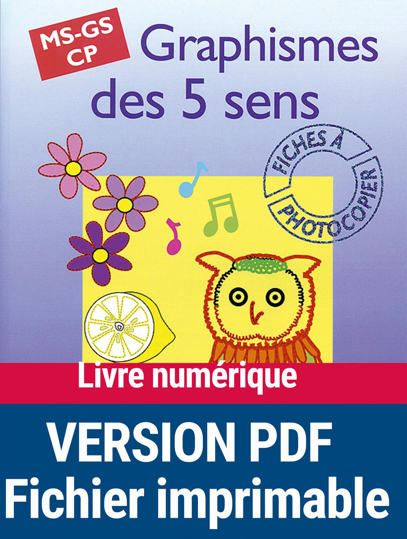 Graphismes des 5 sens (ebook)
