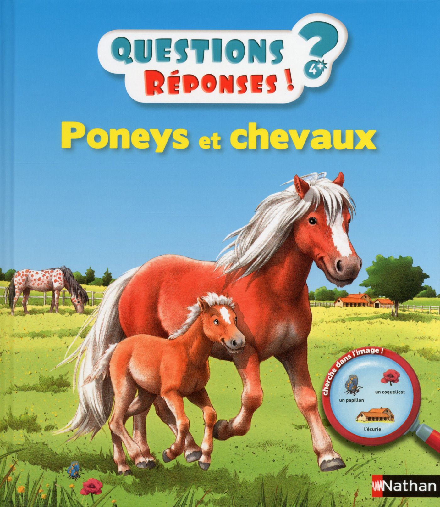 Poneys et chevaux - Questions/Réponses - doc dès 5 ans