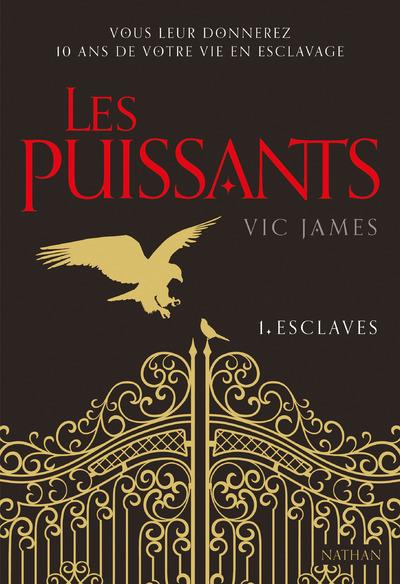 LES PUISSANTS - TOME 1 ESCLAVES