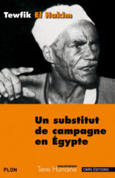 UN SUBSTITUT DE CAMPAGNE EN EGYPTE