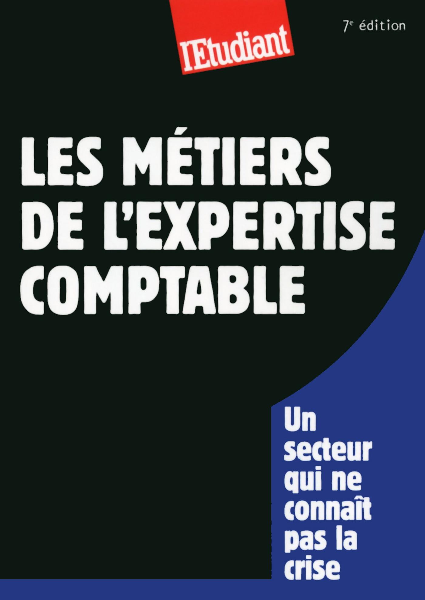 Les métiers de l'expertise comptable (ebook)