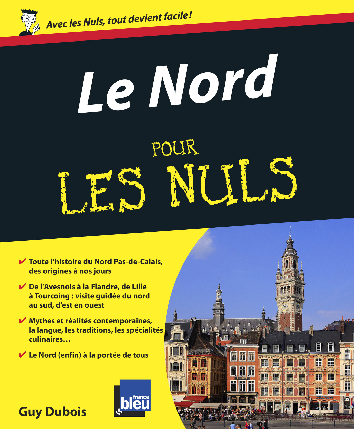 Le Nord Pas-de-Calais Pour les Nuls (ebook)