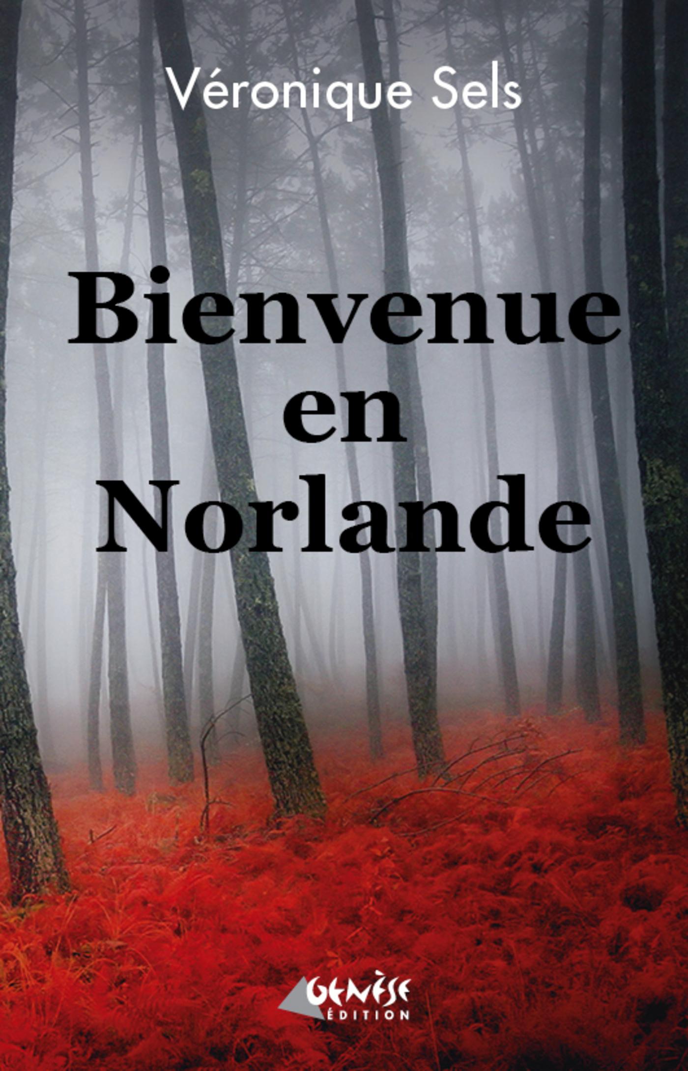 Bienvenue en Norlande (ebook)