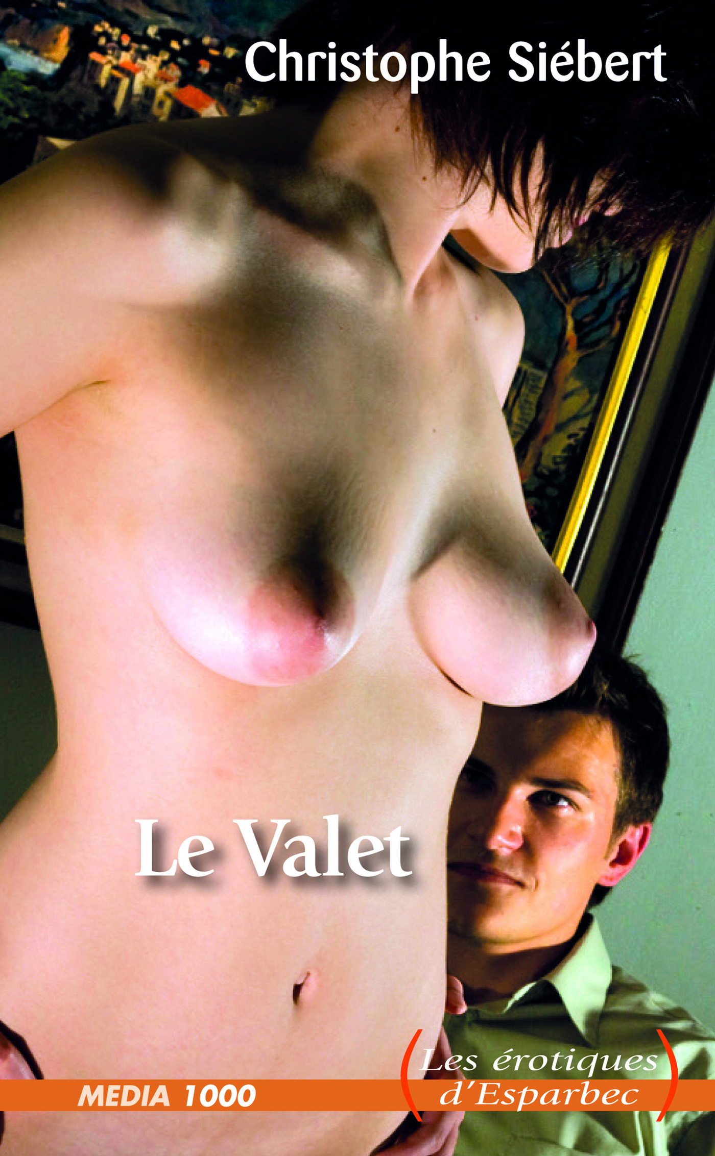 Le Valet (ebook)