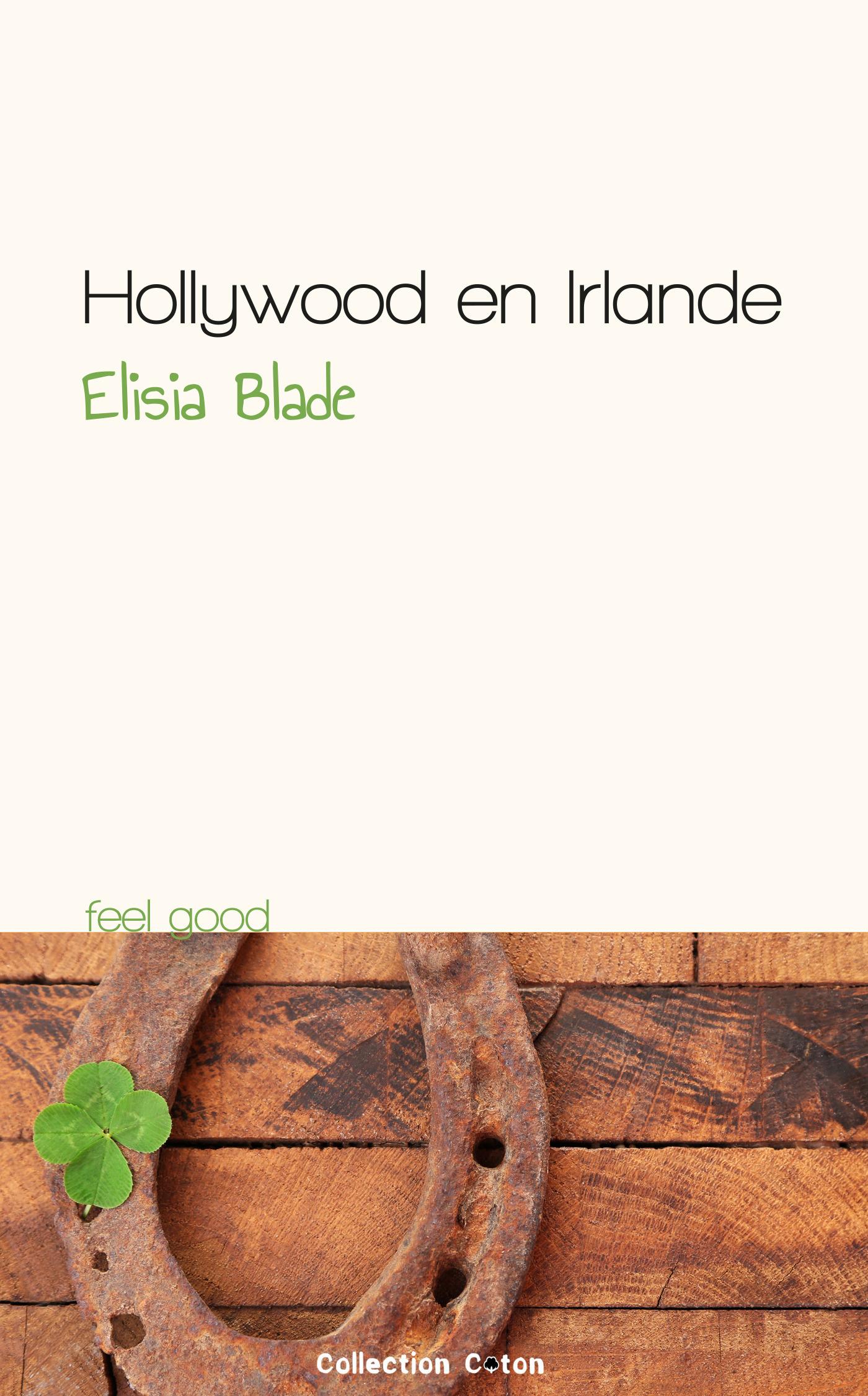 Hollywood en Irlande (ebook)