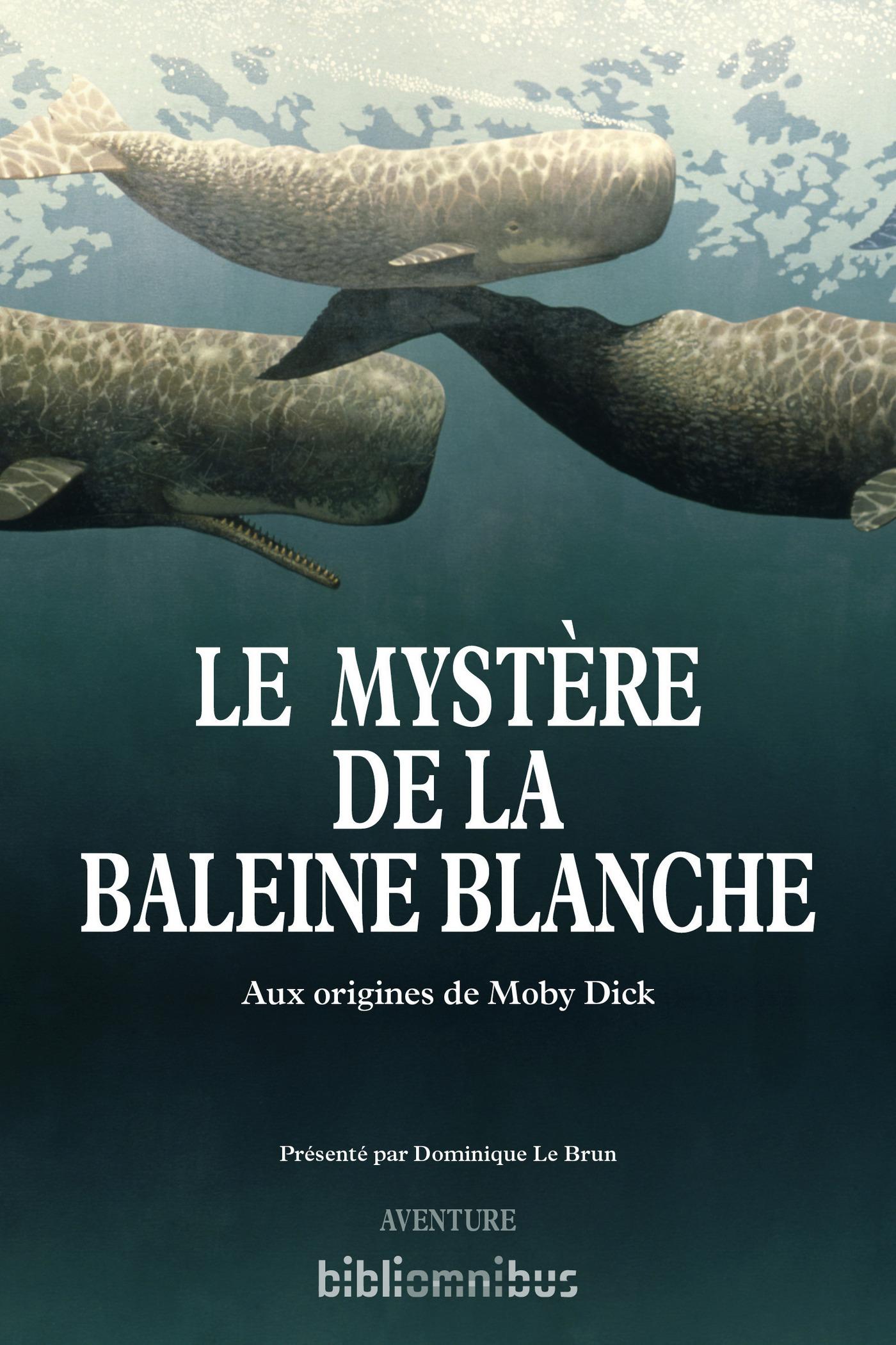 Le mystère de la baleine blanche (ebook)
