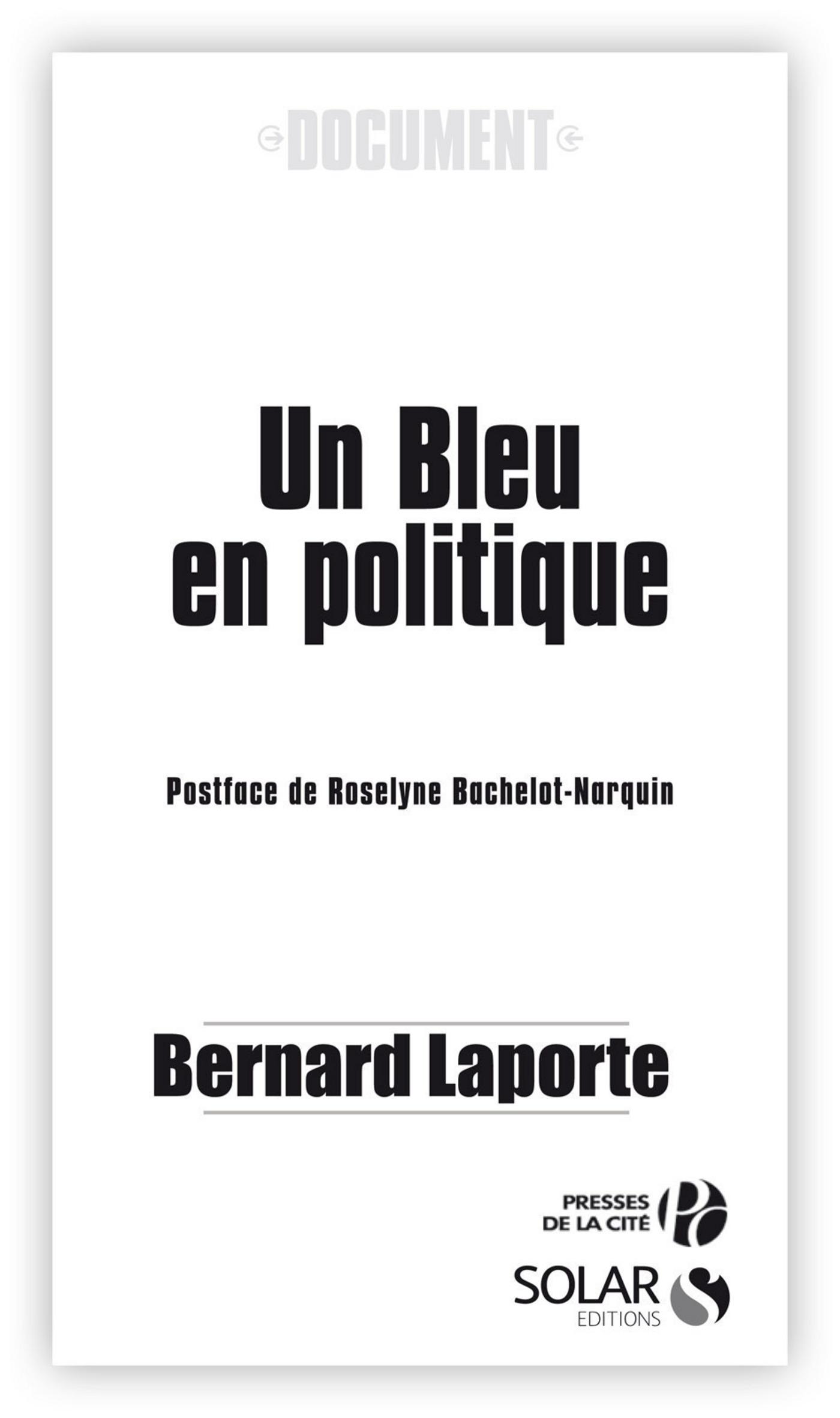 Un bleu en politique