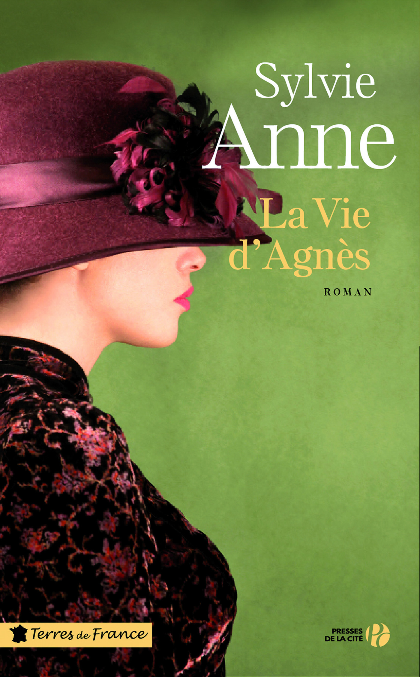La vie d'Agnès (ebook)