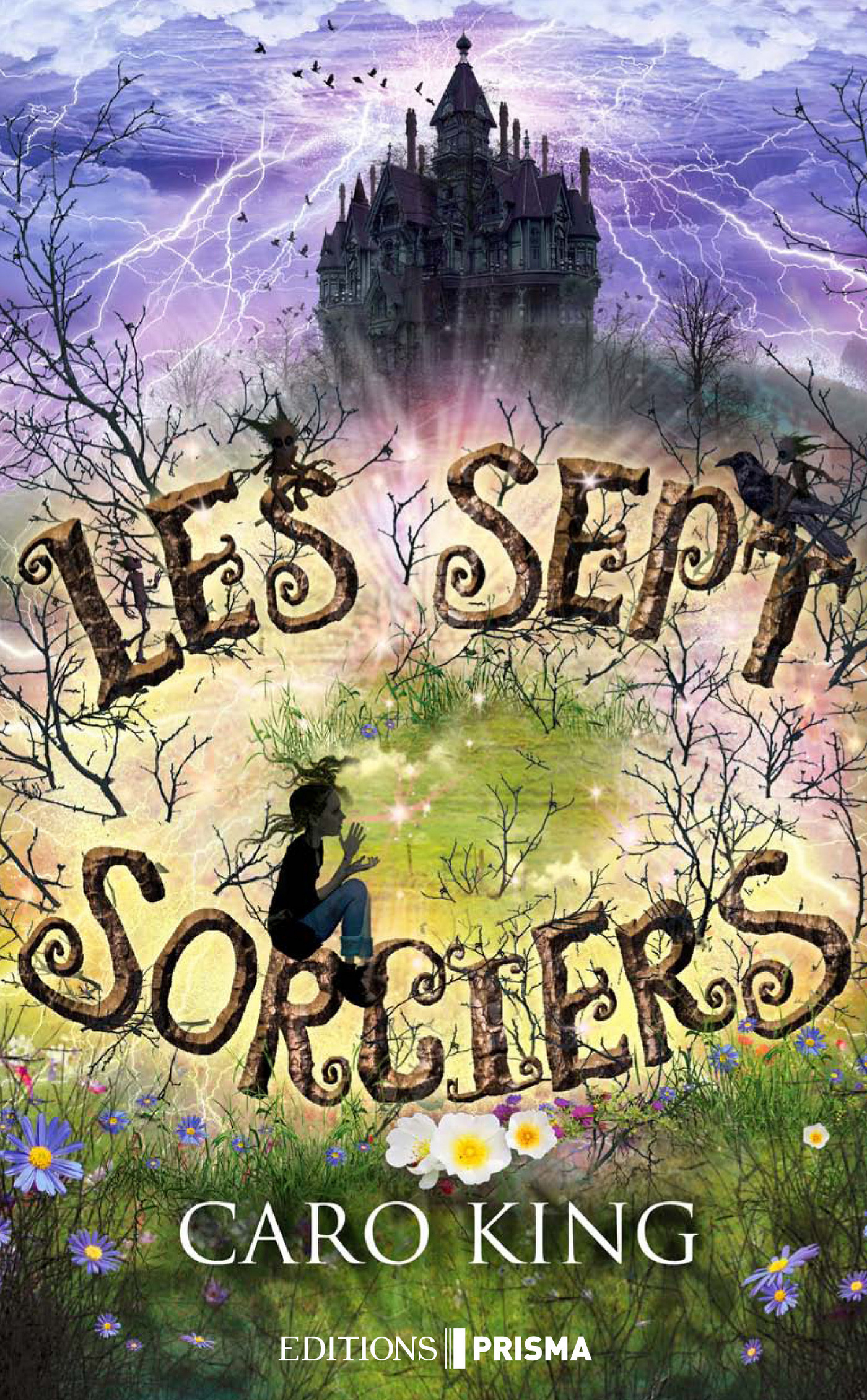 Les sept sorciers (ebook)