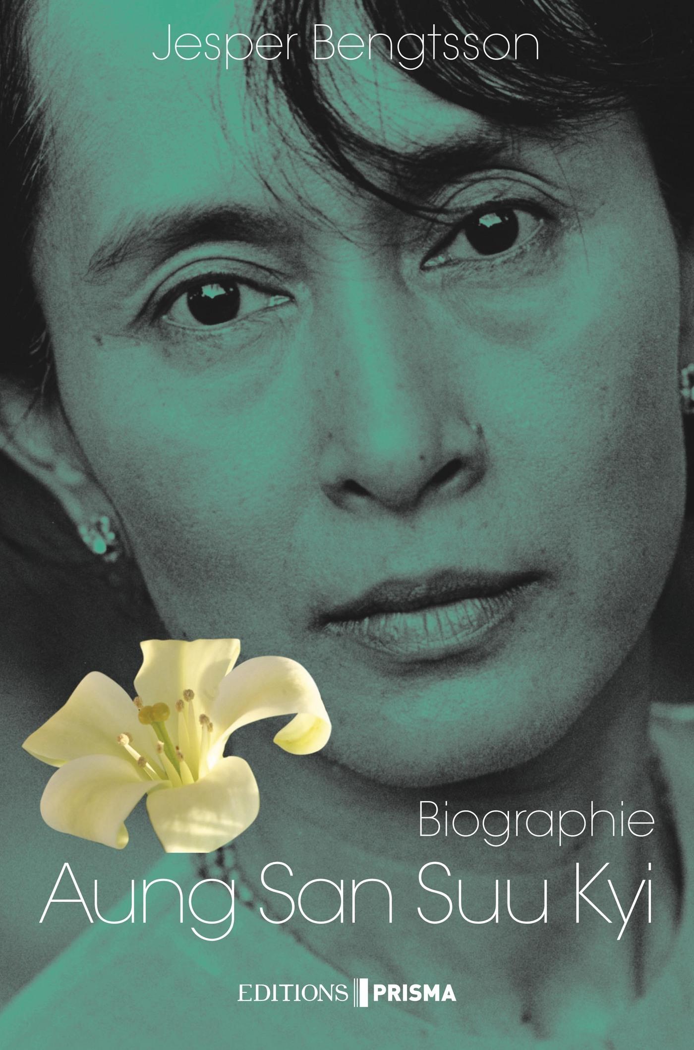 Aung San Suu Kyi Un pays, une femme, un destin (ebook)