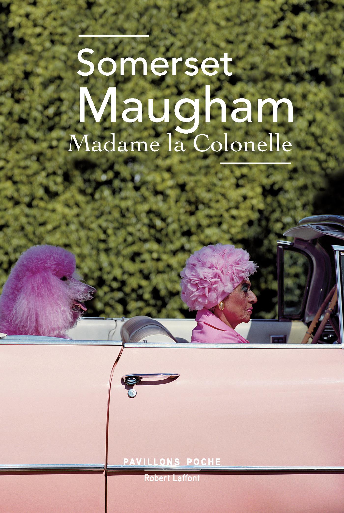 Madame la colonelle (ebook)