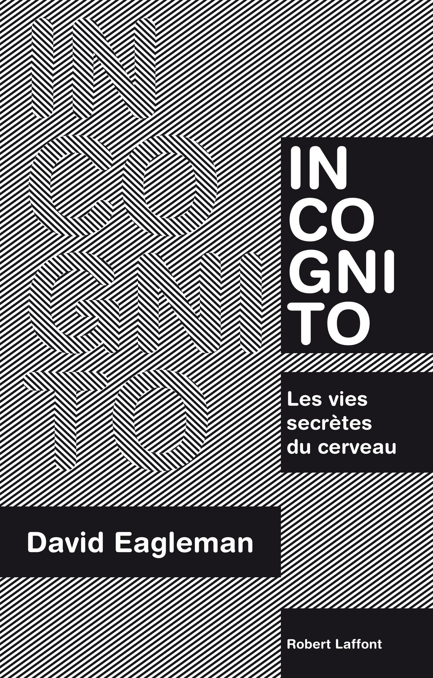 Incognito (ebook)