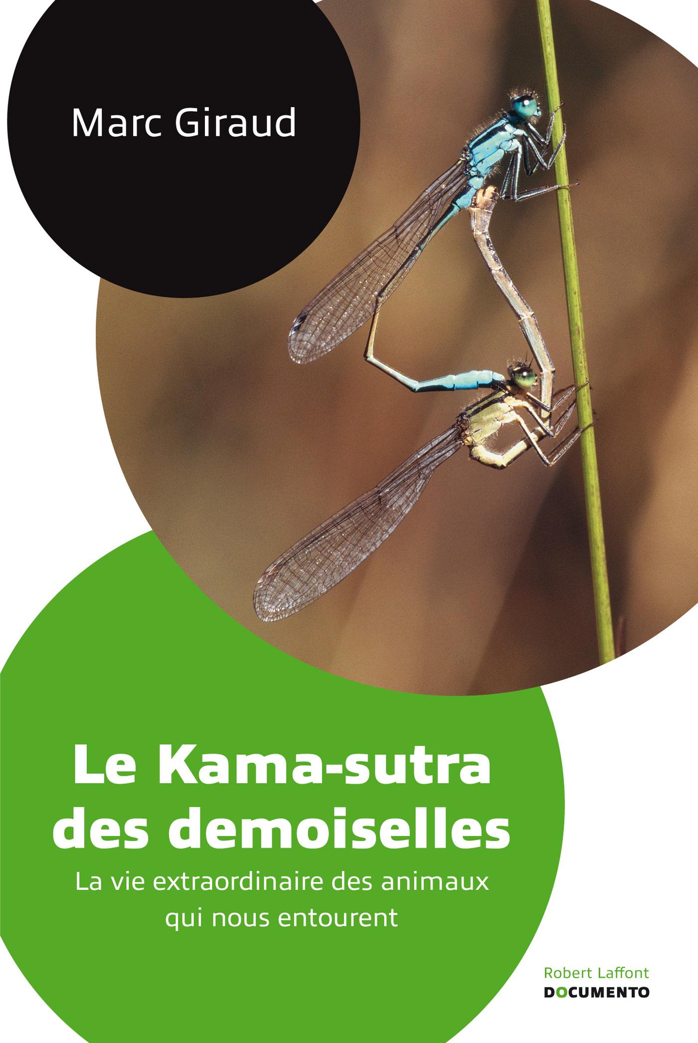 Le kama-sutra des demoiselles (ebook)