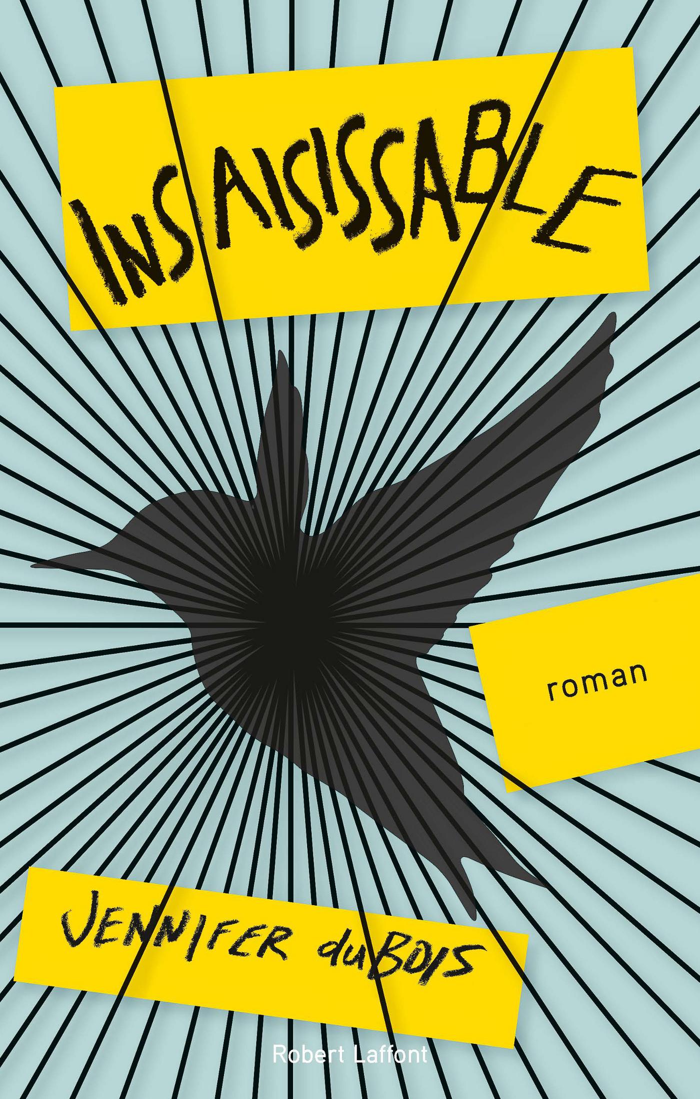 Insaisissable (ebook)