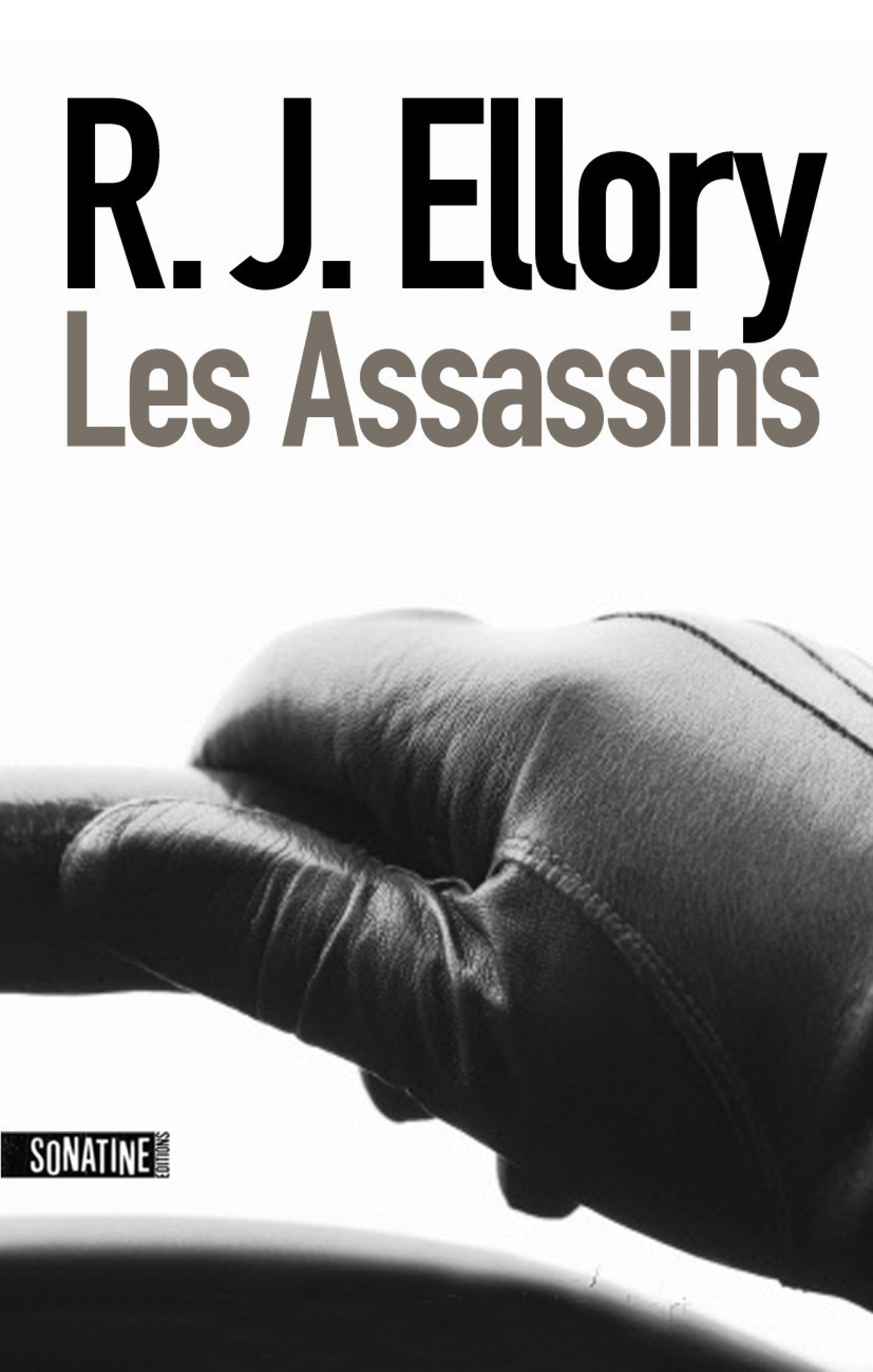 Les Assassins (ebook)