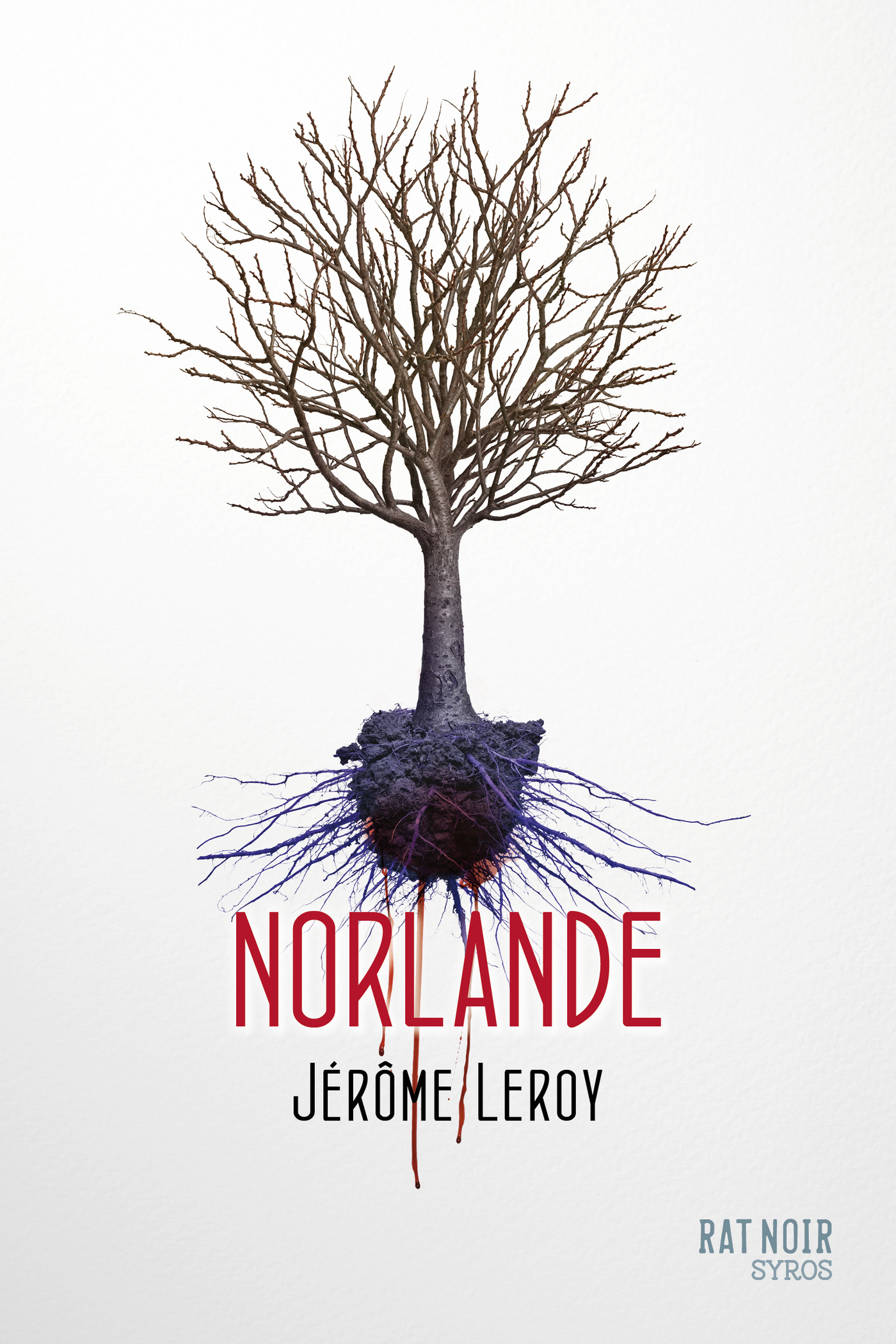 Norlande (ebook)
