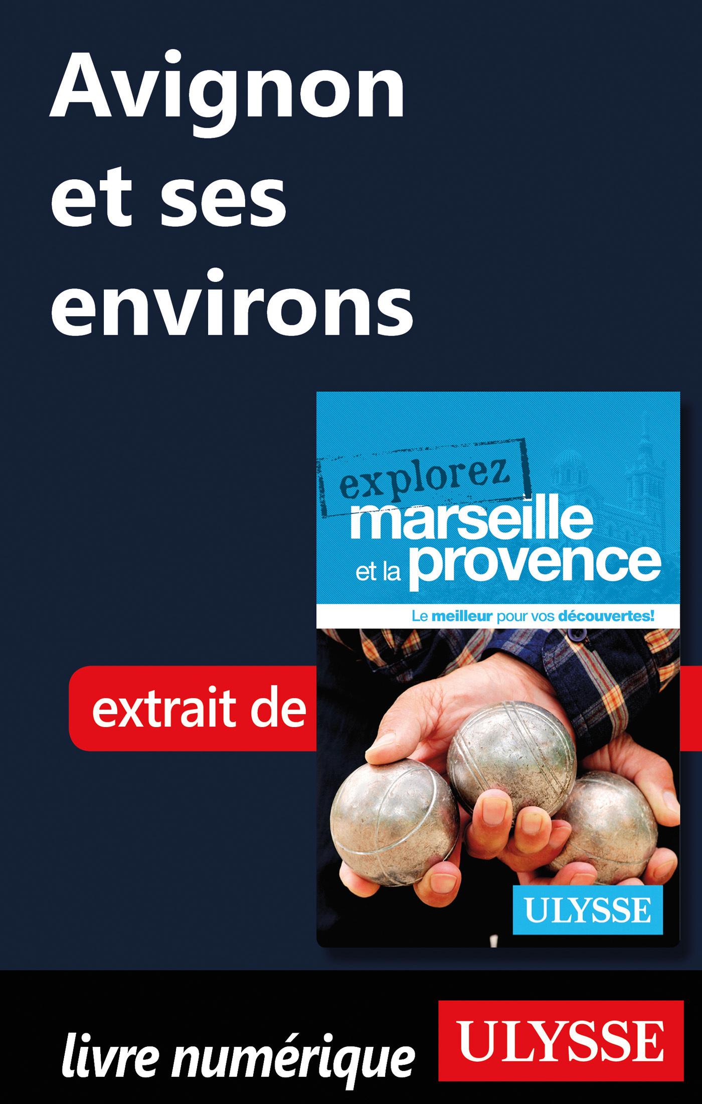 Avignon et ses environs (ebook)