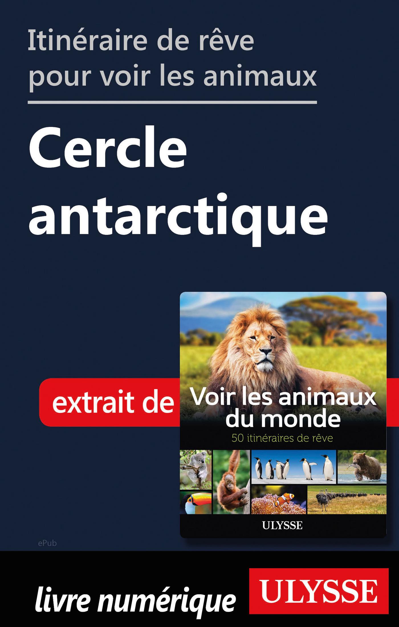 Itinéraire de rêve pour voir les animaux - Cercle antarticle