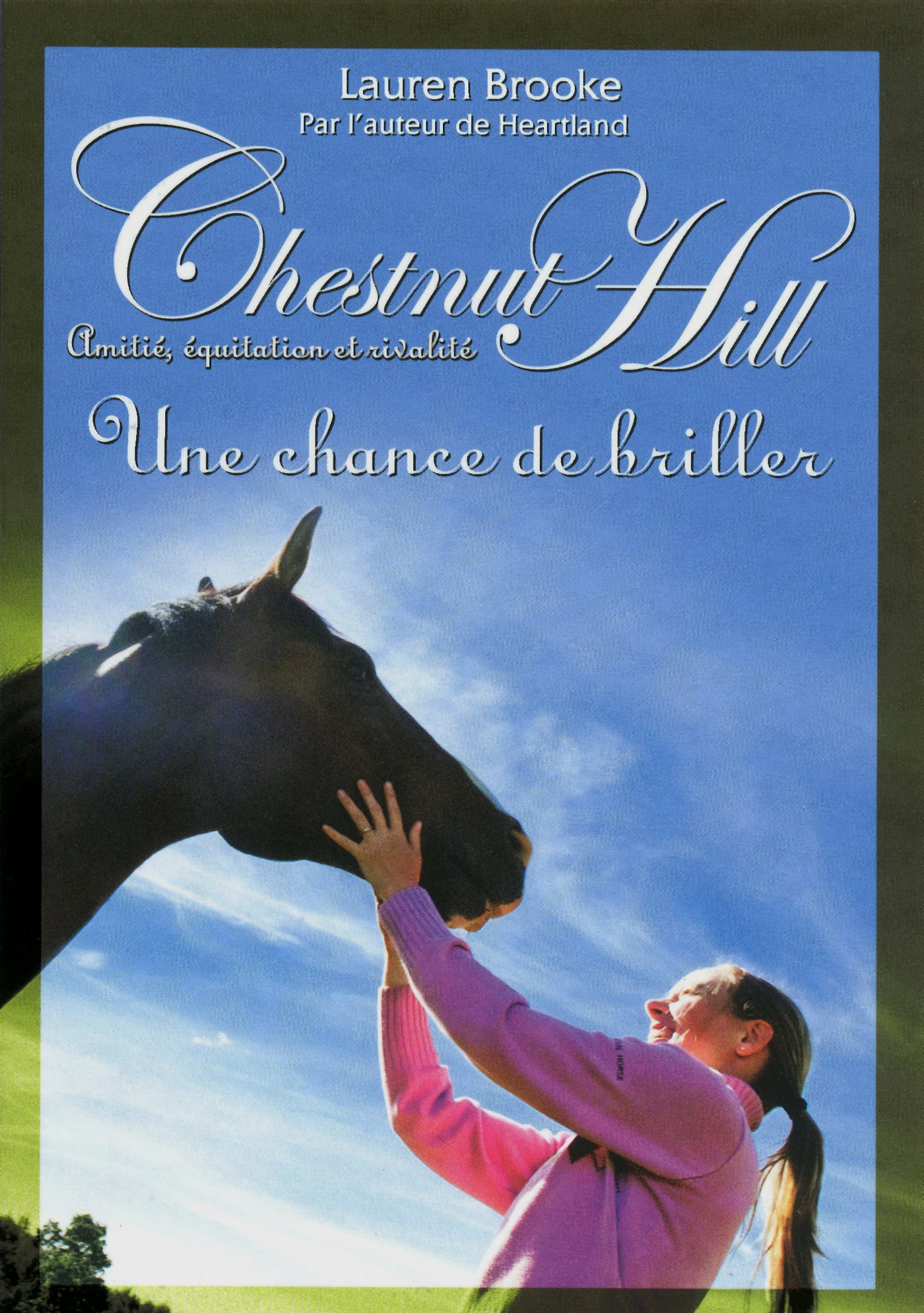 Chestnut Hill tome 11 (ebook)