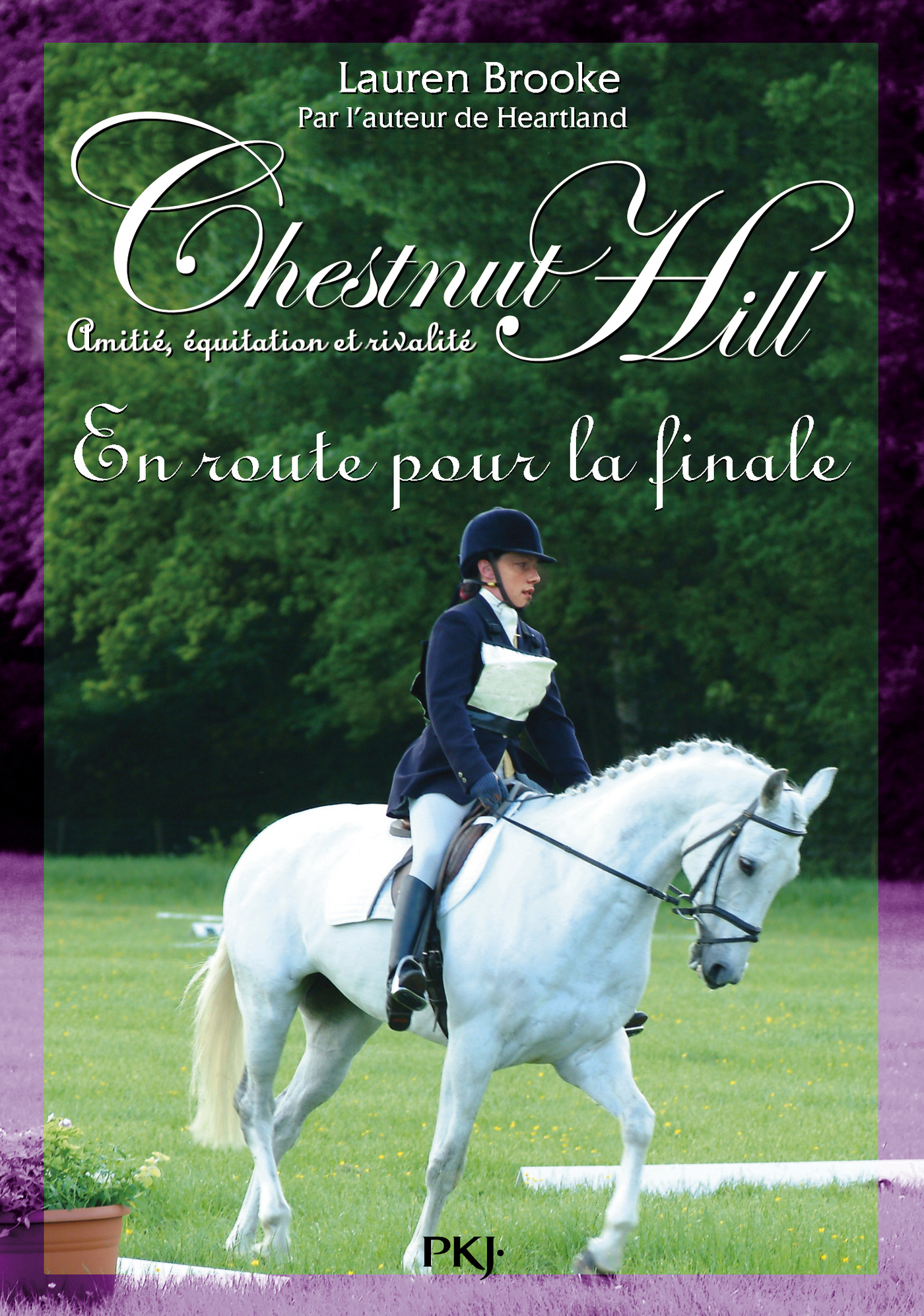 Chestnut Hill tome 14 (ebook)