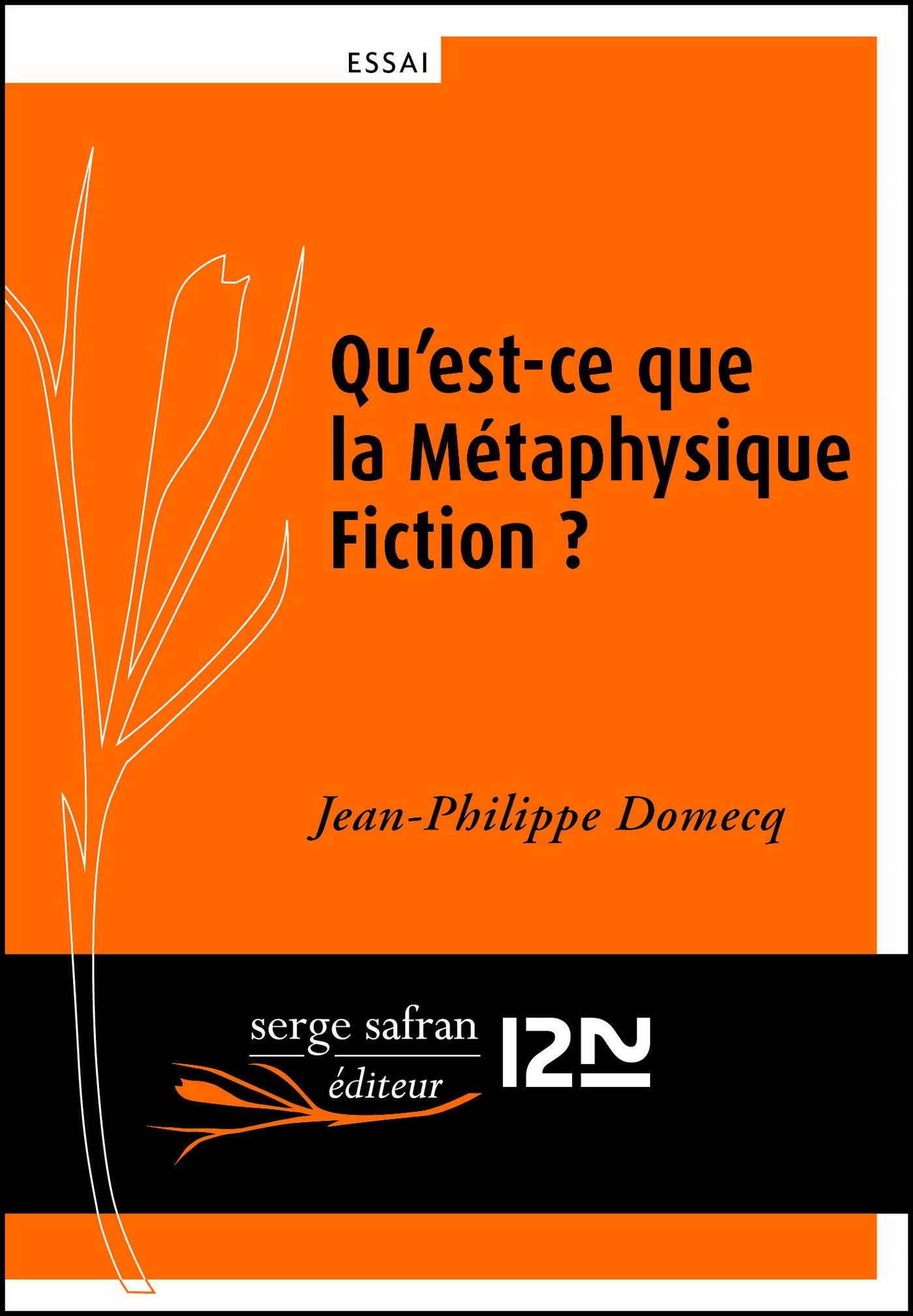 Qu'est-ce que la métaphysique fiction ?